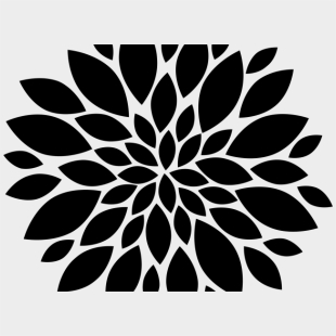 Black And White Dahlia Flower Isolated On Background Stock Illustration -  Download Image Now - iStock