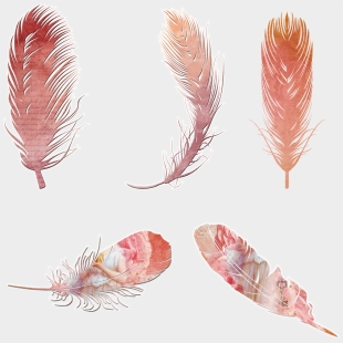 Arrow Feathers Cliparts & Cartoons For Free Download - Jing fm