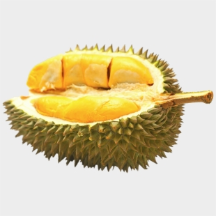 fruit clipart durian durian png cliparts cartoons jing fm fruit clipart durian durian png