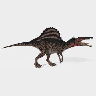 Roblox Dinosaur Simulator Spinosaurus Png Download Dinosaur