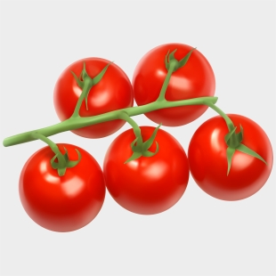 Image result for picture of tomato to draw   Tomato drawing, Vector free,  Graphic design art