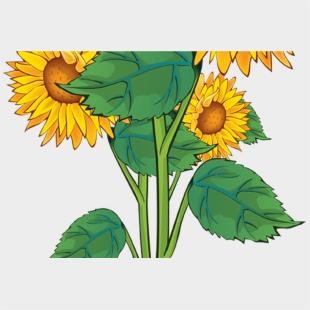 Summer Flower Border Clip Art Free Gardening Flower Summer Flowers Clipart Cliparts Cartoons Jing Fm